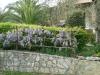 giardino (10)